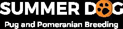 Summer-Dog Nice    EN-summerdog-logo-text-246x60